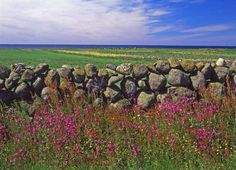 Jæren, Norway Another form of fence line Land Of Midnight Sun, Beautiful Norway, Norway Travel, Arctic Circle, Lofoten, Old Farm, Farms, Finland, Travel Ideas