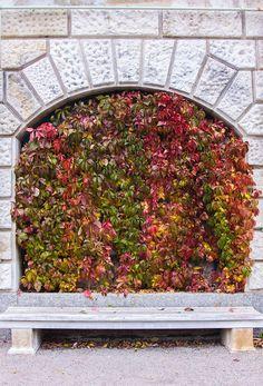 Herbst in Wien | STADTBEKANNT | Das Wiener Online Magazin Online Magazine, Road Trip Destinations, City, Autumn