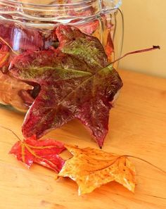 Couple if coats of modge podge to a leaf...preserved and not falling to pieces in my house when used for decor