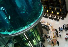 Hotel lobby hosts the world's largest cylindrical aquarium | DVICE