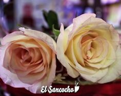 Flores para el mal de amores.  #QUELASFLORESNOPASENDEMODA