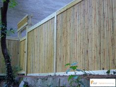 fast privacy fence ideas bamboo privacy fence cheap privacy fences
