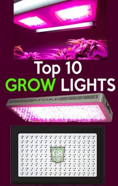 House Plant Maintenance Tips Top 10 Grow Lights For Indoor Growing. These Led Grow Lights Will Helps Your Plants Get All The Nutrients They Need To Grow. Utilizing The Indoor Led Grow Lights Like These Will Help You Start Seeds And Grow Different Types Of Indoor Grow Lights, Best Led Grow Lights, Grow Lights For Plants, Big Plants, Growing Plants, Indoor Greenhouse, Greenhouse Growing, Greenhouse Plans, Greenhouse Gardening
