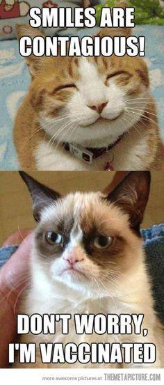 Grumpy Cat has had his shots  :P