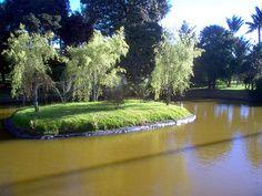 """Jardin Botanico Bogota  """"Este jardín botánico alberga unas 18206 accesiones de plantas vivas, con unos 2143 taxones de plantas cultivadas, estando especializado en las plantas de la región andina."""" Wikipedia Spanish Pronunciation, Santa Fe, River, Explore, Country, City, Outdoor, Bogota Colombia, Hotels"""