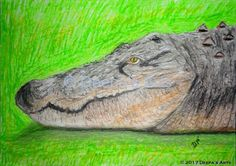 How to oil pastel a crocodile:  https://www.youtube.com/watch?v=L_iZPtsIA2o