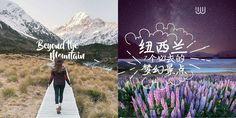 让你屏住呼吸!世界地理教室之称 · 纽西兰7个必去的梦幻景点  时序即将进入秋季,然而此时的南半球春意可是正上枝头呢!尤其有「世界地理教室」的纽西兰,拥有满天星空、冰河融化汇聚而成的湛蓝湖面、终年积雪的壮丽山脉、杳无人迹的温带雨林、以及春季限定的紫红花海……都是到访此地绝不可错过的7大美景喔!  1. 星空堤卡波 Lake Tekapo        堤卡波最经典的场景就是善良牧羊人教堂,虽然教堂不大,但位于湖岸边,有湖景和天空接成一片的渐层蓝色作为背景,美的令人目不转睛,请注意教堂只开放到下午四点做参观,夜晚的堤卡波也是一大美景,这里的星空是国际无光害协会(International Dark-Sky Association)认证世界面积第一大无光害的星空,夜晚躺在草地上观赏满天星斗,或是进行星空、星轨和银河的摄影都是很棒的选择喔!有机会来到这,不妨放下身边一切的3C用品,好好的用眼睛和心记录美丽的星空吧!    2. 凯古拉 Kaikoura…