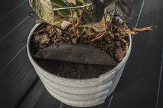 Agrotkanina Planter Pots