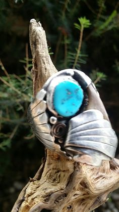 My Ring  Turquoise coral  Claw  Love it ;)