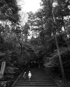 Elderly Couple in Kyoto - repost #日本 #japan #kyoto #京都 #elderly #couple #blackandwhite #モノクロ #外 #自然 #nature #outdoors #steps #階段 #trees