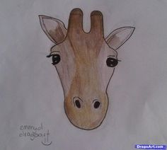 how to draw a giraffe face in front view