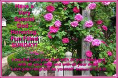 Happy Sunday Images, Sunday Love, Love Your Neighbour, Love The Lord, Blessings, Blessed, Christian, Fun, Happy Sunday Pictures