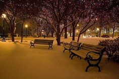 i need to see snow and lights this year!