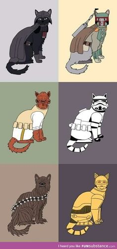 Cat Wars: Return to the Litterbox