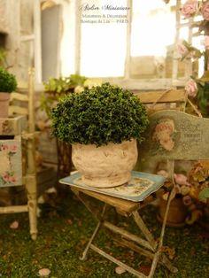 Topiaire miniature à la française dans un pot en terre cuite teintée de rose…