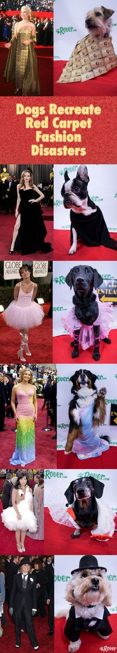 Who wore it better? #AcademyAwards #Oscars #RedCarpet