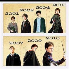 Hogwarts Alumni: Harry Potter Evolution