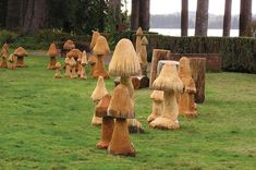 Forage for Mushrooms at Lake Quinault during the annual Mushroom Festival
