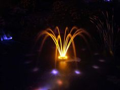 LED Lights in Pond Fountain