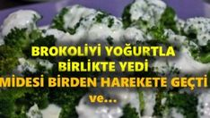 His brooke and yogurt together - - Food And Drink, Herbs, Aspirin, Yogurt, Food, Herb, Spice