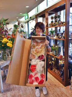 【大佐和花卉園】さまから、アンスリウムの新品種『マライケ』初入荷!