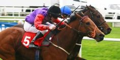 Tips On How To Bet On Horse Race In The United Kingdom