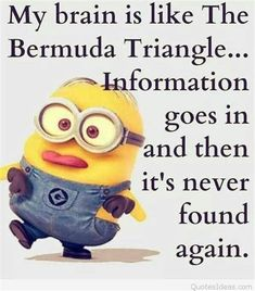 Funny minion quotes are the best way to brighten your mood or your friends. Here is some awesome funny minion quotes with pictures just for you for the day. Funny Minion Pictures, Funny Minion Memes, Funny Pictures With Captions, Minions Quotes, Jokes Quotes, 9gag Funny, Funny Relatable Memes, Funny Facts, Funny Jokes