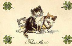 Bonne Année postcard cats