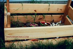 What Goes in a Compost Pile? » Nature Moms