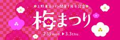 上野東京ライン開業1周年記念 梅まつり