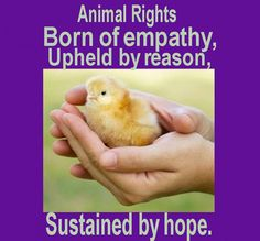 vegan: born of empathy, upheld by reason, sustained by hope.