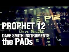 DSI PROPHET 12 // the PADs