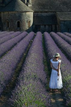 Lavender fields in Provence.  Wish I was her...we do share a hat in common.
