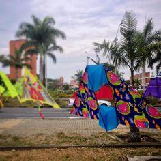 #CaliSeVe de colores con las cometas de agosto. #Cali #CaliEsColor #CaliAPie #CaliEsArte #kite #cometa #colors #iphonephotography #colombia #wind