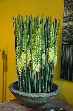 Geert Pattyn a beautiful garden & nice interior decorations | Fleur Creatif