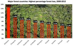 Chart: the world's highest deforestation rate