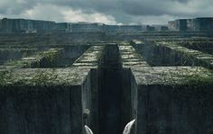"""If you haven't already seen """"The Maze Runner,"""" you should probably hurry to the next cinema while you still have the chance. Why?"""