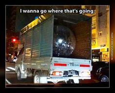 Follow that disco ball!