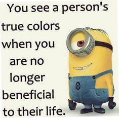 Best Top 30 Minion Quotes