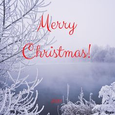 Stress Free, Counseling, Merry Christmas, Neon Signs, Merry Little Christmas, Wish You Merry Christmas, Therapy