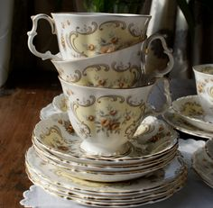 Teacup ♥