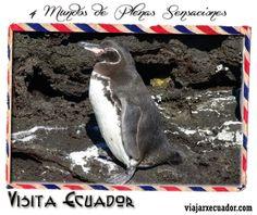 mi Ecuador #Ecuador