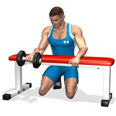 WRIST ROTATION OVER A BENCH INVOLVED MUSCLES DURING THE TRAINING FOREARMS