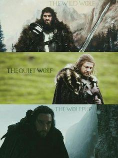 Brandon, Eddard, Benjen Stark