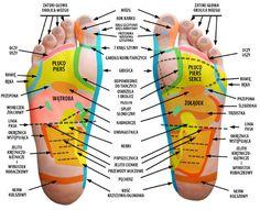 Zobacz co daje ci, spanie z cebulą w skarpecie ? Tarot, Cupping Therapy, Alternative Treatments, Foot Massage, Chinese Medicine, Reflexology, Healthy Drinks, Back Pain, Healthy Choices