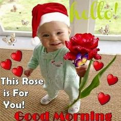 This rose is for you! Good Morning baby good morning good morning quotes good morning sayings cute good morning quotes good morning image quotes adorable morning quotes Good Morning Gif Funny, Good Morning Smiley, Very Good Morning Images, Funny Good Morning Messages, Happy Good Morning Quotes, Good Morning Beautiful Quotes, Good Morning Prayer, Good Morning Funny, Good Morning Picture
