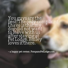 A testimonial image I made for Pompano Pet Lodge's Facebook page #dogs #pompano #pets