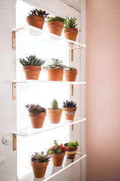 Window Shelf For Plants, Kitchen Window Shelves, Home Decor Shelves, Plant Shelves, Kitchen Windows, Window Ledge, Shelf Over Window, Bedroom Shelves, Door Shelves