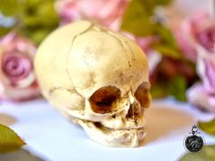 Realistic Fetal Skull   real size resin by GothChicAccessories, $29.50