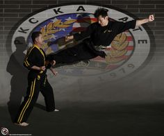 At Shattered Images Martial Arts Photography we can make custom backgrounds with your school's logo.